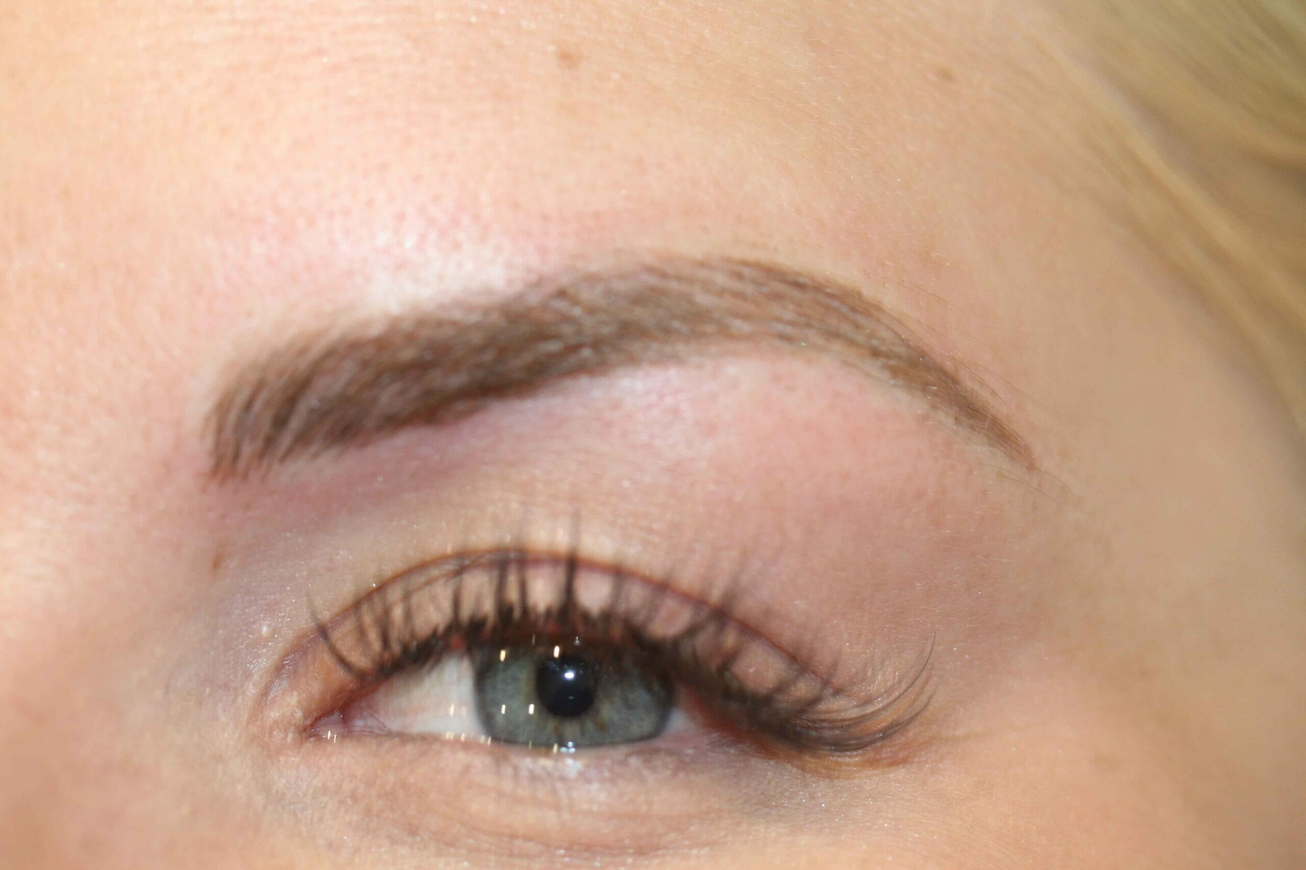 Eyebrow After Angle Scaled